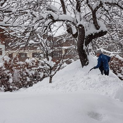 sneeuwruimen